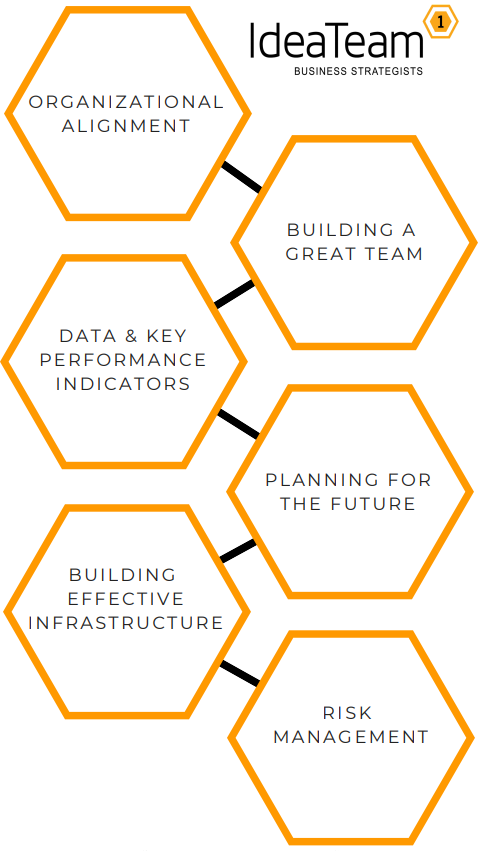 Organizational alignment; Building a great team; Data & key performance indicators; Planning for the future; Building effective infrastructure; Risk management